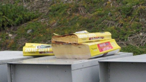 Yellow Pages Expense