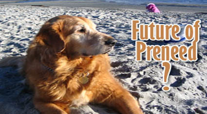 Preneed Dog Pound: Pit Bulls and Golden Retrievers